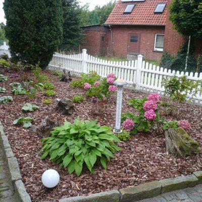 Umgestaltung frisch gepflanzt